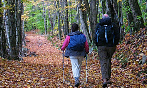 Hiking Guides and Trails